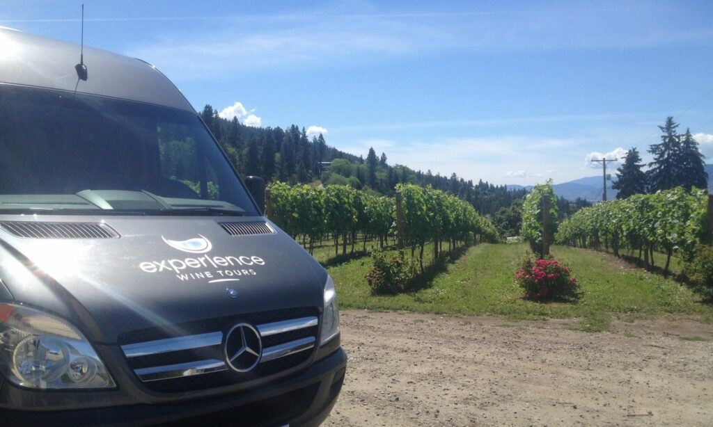 Wine Tour Sprinter Van
