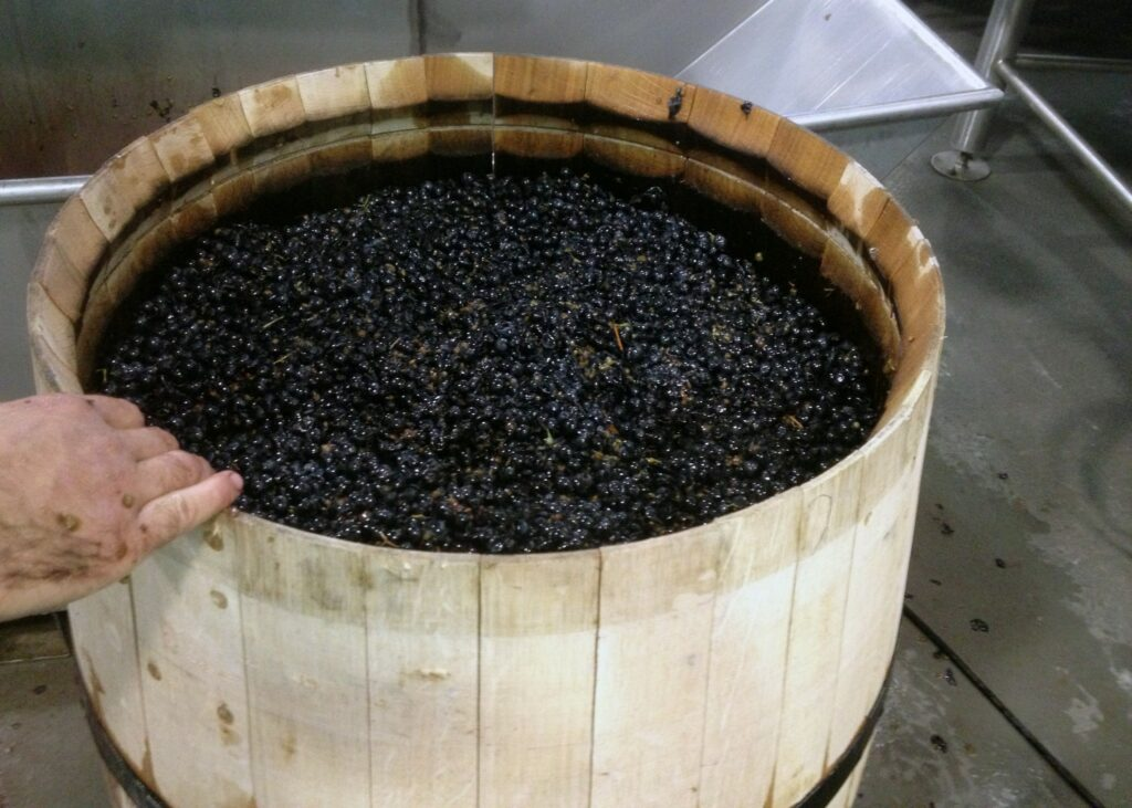 Grape skins soaking during the winemaking process.